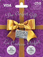 The Perfect Gift VISA 250