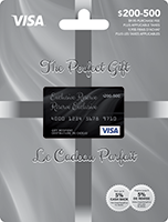 The Perfect Gift VISA Elite 200-500