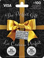 The Perfect Gift VISA 100